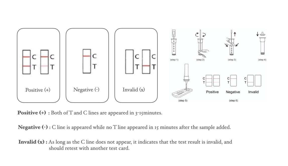 Rapid Antigen Detection Kit